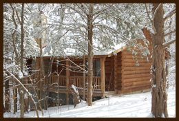 ParkCliff Log Cabins at Roaring River